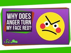 Why Does My Face Turn Red When I'm Angry? Video