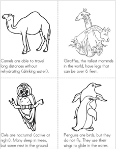 Animal Facts Book Printables & Template for Kindergarten