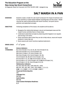 Salt Marsh in a Pan Lesson Plan