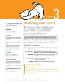 Reducing Your Stress Lesson Plan