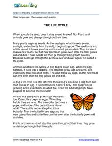 The Life Cycle Worksheet