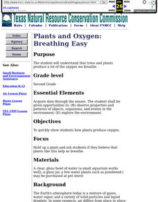 Plants and Oxygen: Breathing Lesson Plan