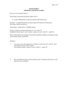 Food Energy Worksheet