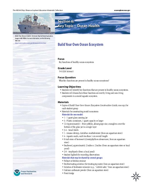 Build Your Own Ocean Ecosystem Lesson Plan