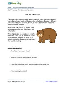 All About Bears Worksheet