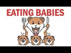 Why Do Animals Eat Their Babies? Video
