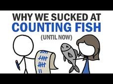 Why We Sucked at Counting Fish (Until Now) Video
