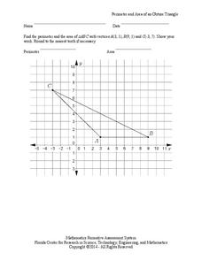 Perimeter and Area of an Obtuse Triangle Assessment