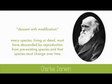 History of Evolutionary Thought Video