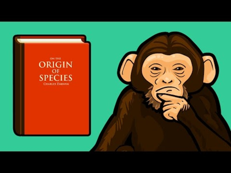Does the Theory of Evolution Really Matter? Video