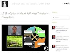 LS2B - Cycles of Matter and Energy Transfer in Ecosystems Video
