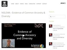LS4A - Evidence of Common Ancestry and Diversity Video