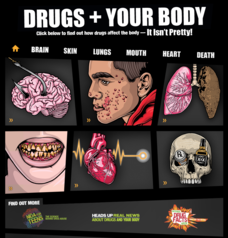 Drugs + Your Body—It Isn't Pretty Interactive