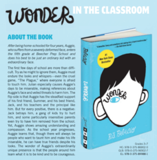 Wonder in the Classroom Lesson Plan
