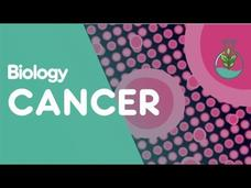 What Is Cancer? Video