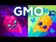 Are GMOs Good or Bad? Genetic Engineering and Our Food Video