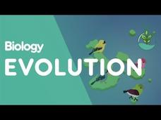 Evolution by Natural Selection Video