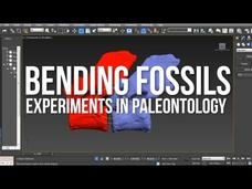 Bending Fossils: Experiments In Paleontology (Harvard Adventures, Part 3) Video