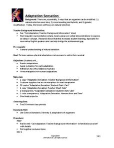 Adaptation Sensation Handouts & Reference