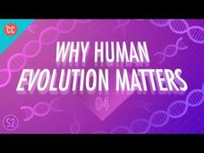 Why Human Evolution Matters: Crash Course Big History #204 Video