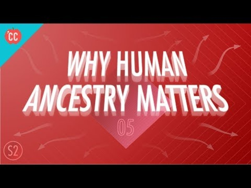 Why Human Ancestry Matters: Crash Course Big History #205 Video
