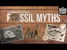 Fossil Myths: Cyclopes, Griffins, and Magic Fairy Bread Video