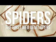 Spiders: The First Web Developers Video