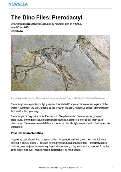 The Dino Files: Pterodactyl Worksheet