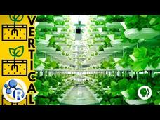Vertical Farming Video