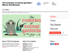 The Evolution of Animal Genitalia Video