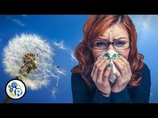 Why Do We Get Allergies? Video