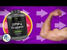 How Does Protein Build Muscle? Video