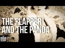 The Flapper and the Panda Video