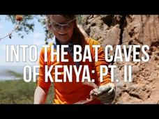 Into the Bat Caves of Kenya: Part 2 Video