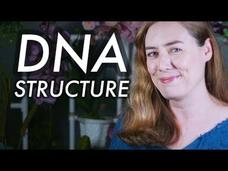 What Is DNA Structure? Video