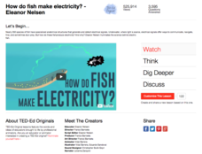 How Do Fish Make Electricity? Video