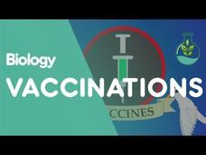 What Are Vaccinations? Video