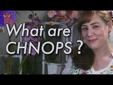 What Are CHNOPS? Video