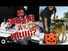Is Sugar a Drug? Video