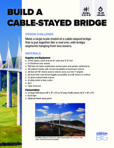 Build a Cable-Stayed Bridge Activities & Project