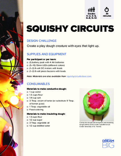 Squishy Circuits Activities & Project