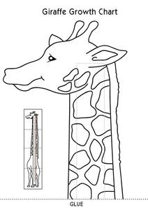 Giraffe Growth Chart Lesson Plan
