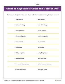 Order of Adjectives: Circle the Correct One Worksheet