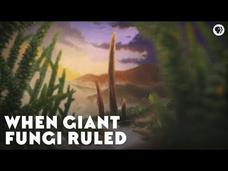 When Giant Fungi Ruled Video