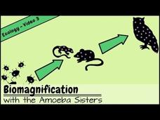 Biomagnification and the Trouble with Toxins Video
