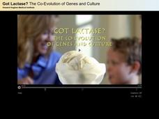 Got Lactase? The Co-Evolution of Genes and Culture Video