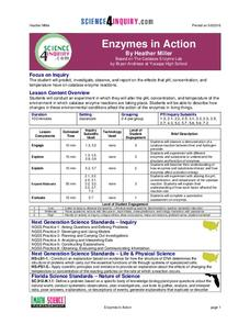 Enzymes in Action Lesson Plan