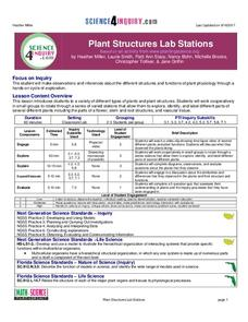 Plant Structures Lab Stations Lesson Plan