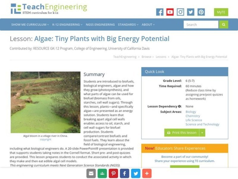 Algae: Tiny Plants with Big Energy Potential Lesson Plan