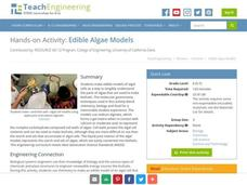 Edible Algae Models Activities & Project